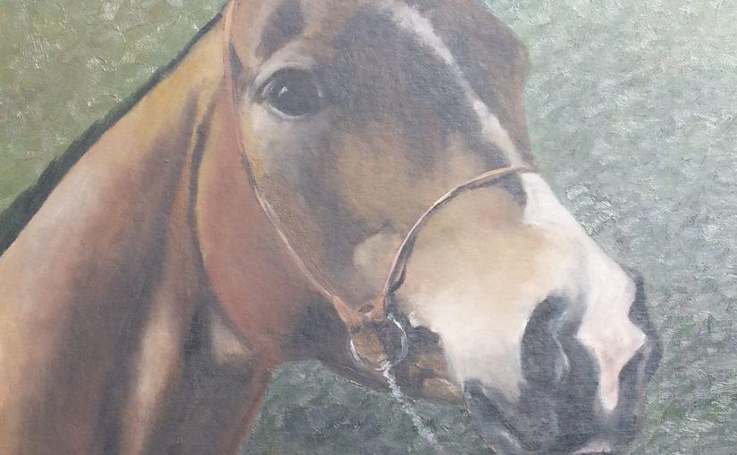 Konie-portrety