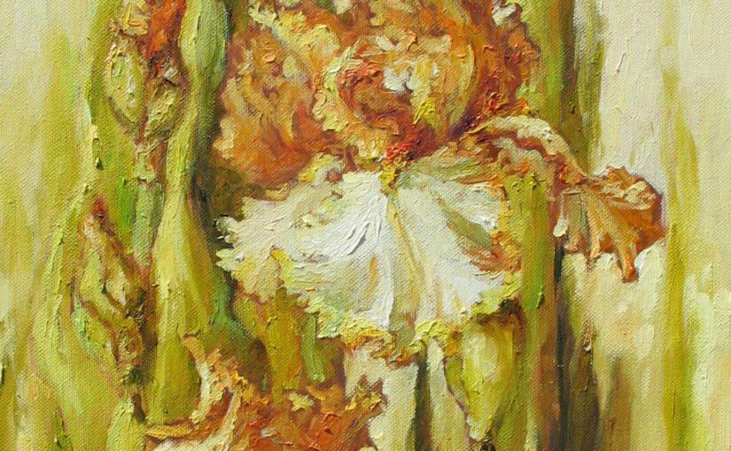 Irysy – zauroczenie kolorami kwiatów
